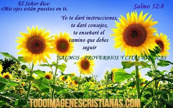 imagenes cristianas salmo 328